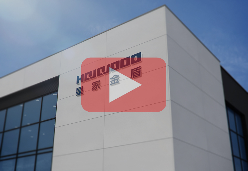 皇家金盾人脸锁企业宣传片